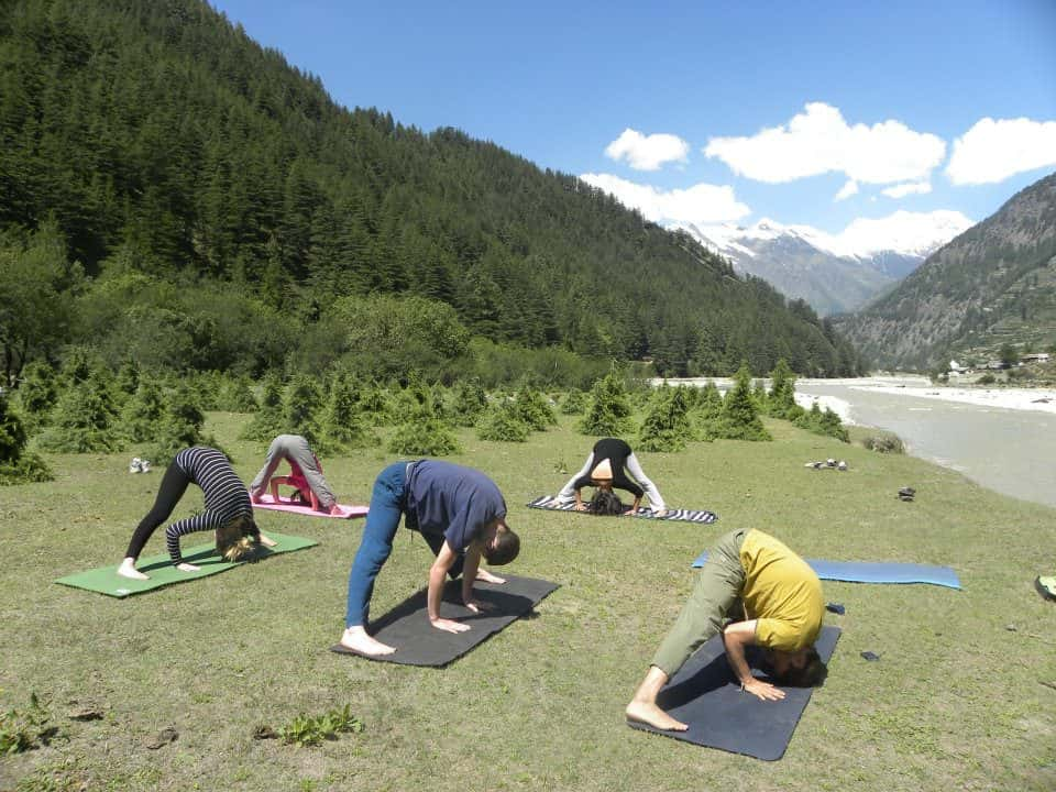 yoga-courses-for-beginners-rishikesh-india